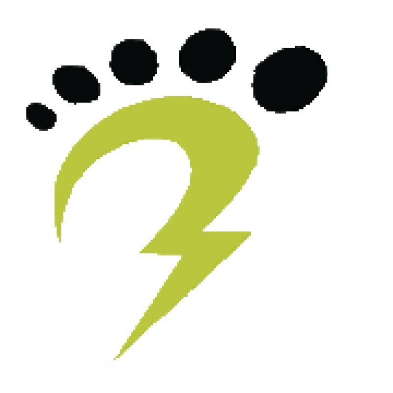 Powerstep Technologies