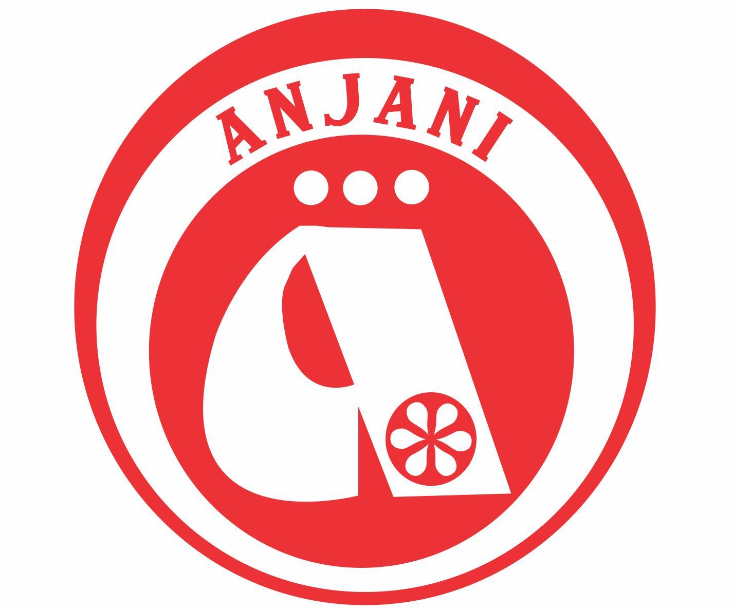 Anjani Industries
